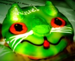 my cat cookie