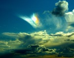 rainbow 4 (2)