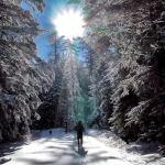 Pagosa Springs winter hike