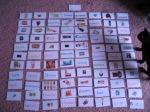 flashcards 003