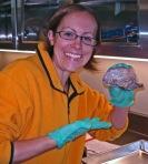 dissecting Eugene 046
